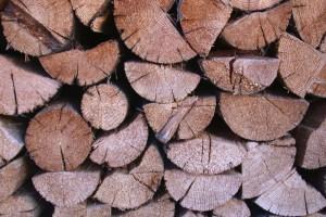 Why Wood Is So Damn Good