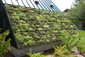 France's Eco-Roof Law
