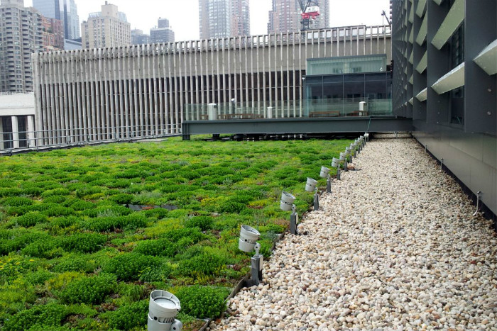 https://sourceable.net/what-is-green-roof-maintenance/