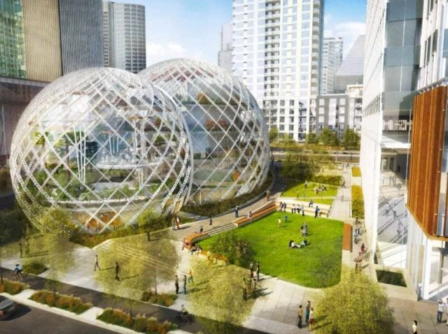 Amazon.com Opens Rainforest in Seattle
