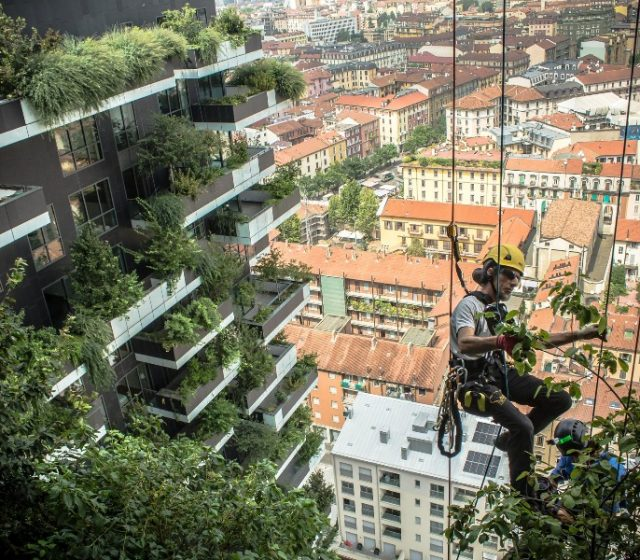Landscaping Trends Reshaping Our Urban Environment