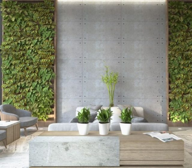 Not All Green Walls are Really Green or Safe