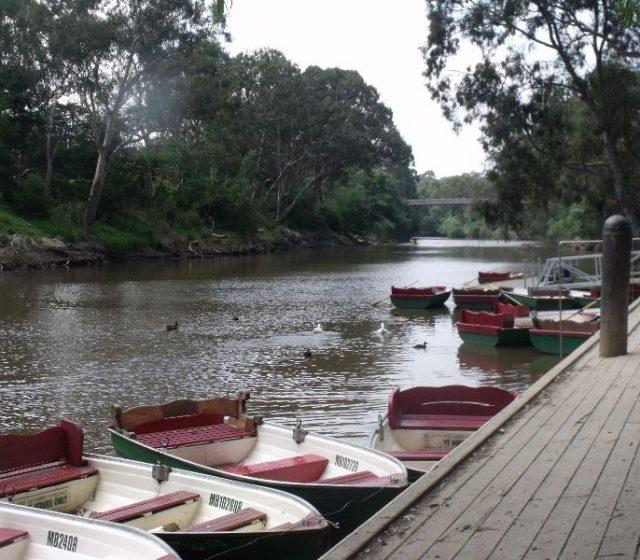 Australia Must Enhance Biodiversity in our Urban Environment