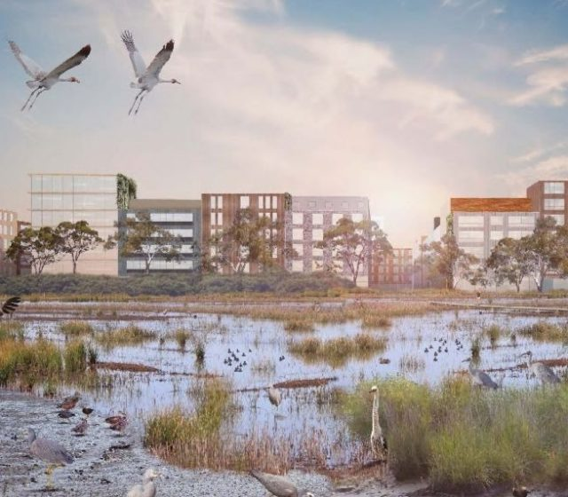 How to Bring Nature Back Onto Your Next Project