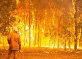 https://sourceable.net/australia-must-improve-bushfire-development-control-and-building-practices/