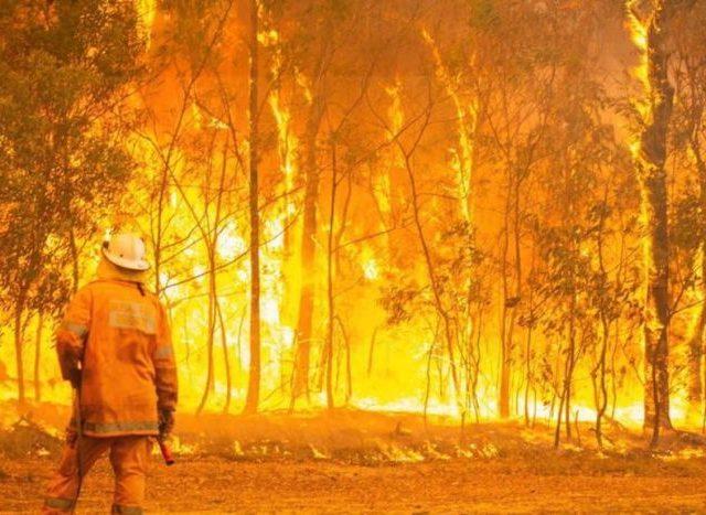 Australia Must Improve Bushfire Development Control and Building Practices
