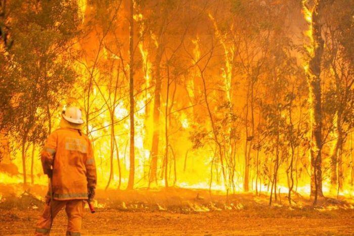 https://sourceable.net/australia-must-improve-bushfire-development-control-and-building-practices/