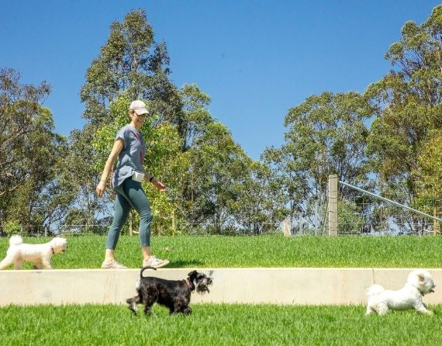 NSW govt spends $20mln on urban parklands