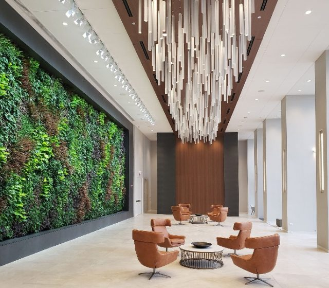 Why You Need Biophilic Design on Your Next Project