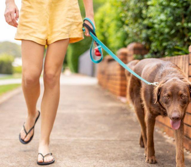 Queensland Lays Down Law on Walkable Neighbourhoods