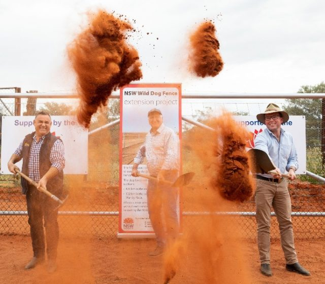 Ground Breaks on World's Longest Wild Dog Fence