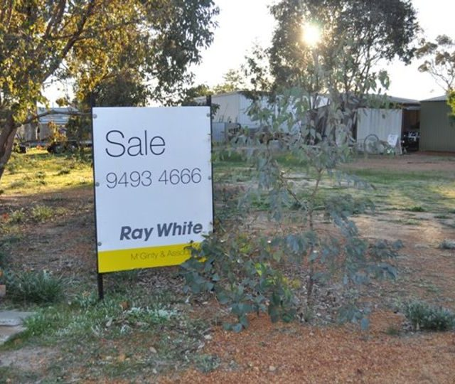 HomeBuilder Sparks Mass Scramble for Land